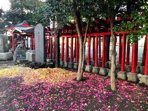 hanzono-shrine6