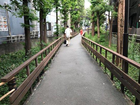 shikinomichi3