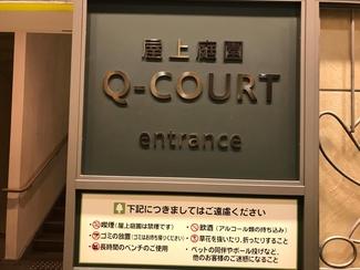 q-court