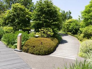 i-garden2