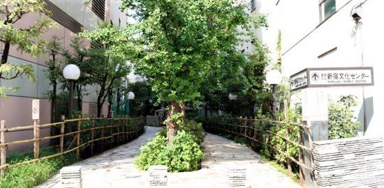 新宿 四季の路