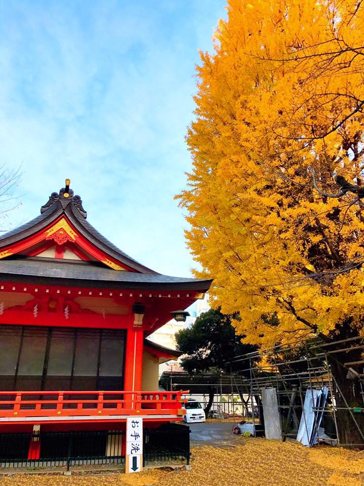 新宿 花園神社境内