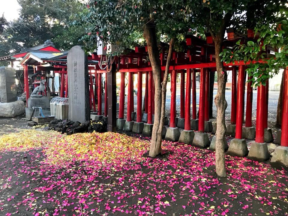 新宿花園神社8